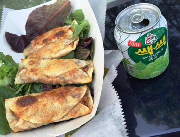 Mandu dumplings from Bo's Kitchen Food Truck, Raleigh- NC Triangle Dining