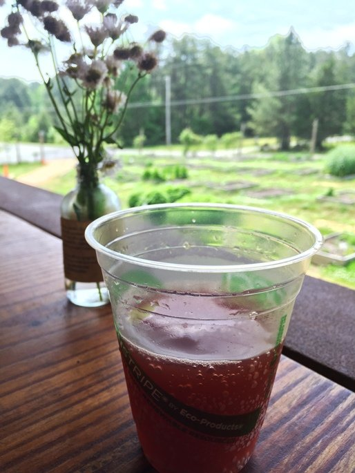 Kombucha and scenery at Honeysuckle Tea House in Chapel Hill- NC Triangle Dining