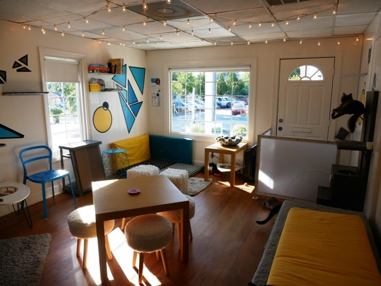 Cat room at Purr Cup Cafe in Raleigh - nctriangledining.com